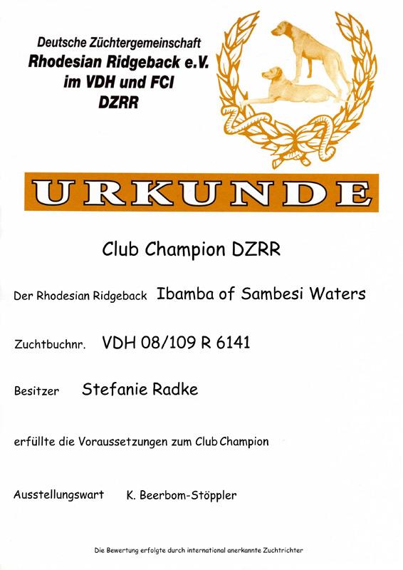 urkunde-champion