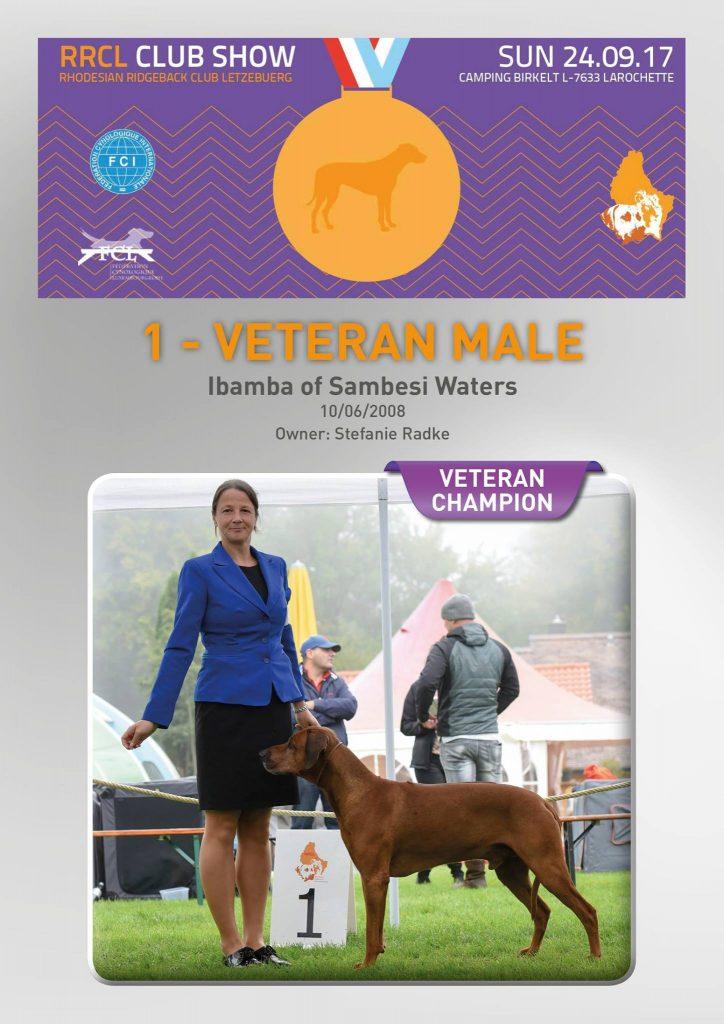 Ch Ibamba of Sambesi Waters Luxumbourg Veteran Champion