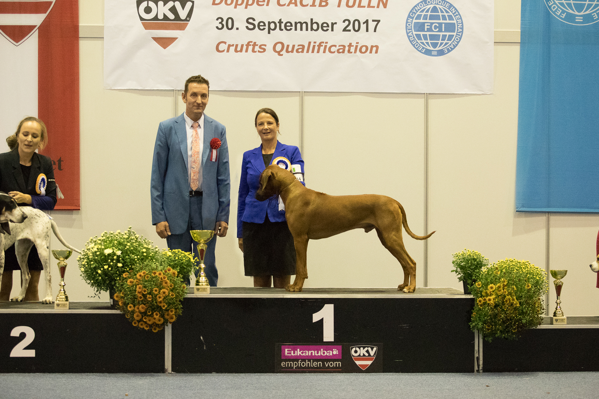Junior World Winner Amsterdam Winner Ndoki Highlander